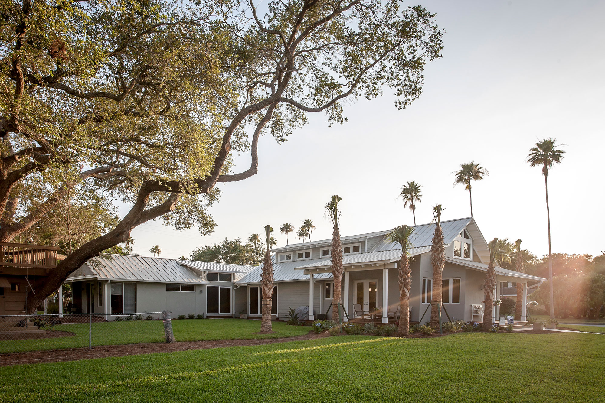 Gray and white home with large oak tree and row of palms in front.