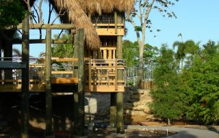 Treehouse structure with thatched roof.